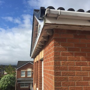 Pvc Fascia and gutters replaced
